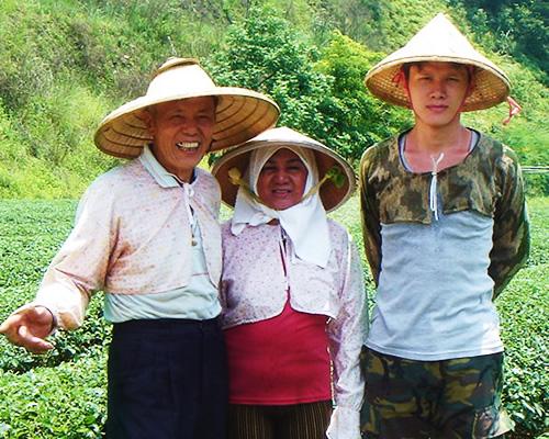 林農園の烏龍茶生産者