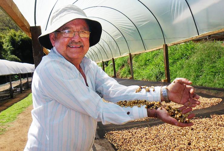 パウリーニョ農園(フェアトレードコーヒー)生産者紹介